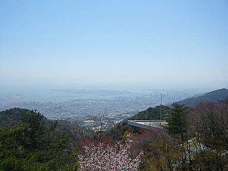 六甲山より神戸市街地を望む(2011年春)