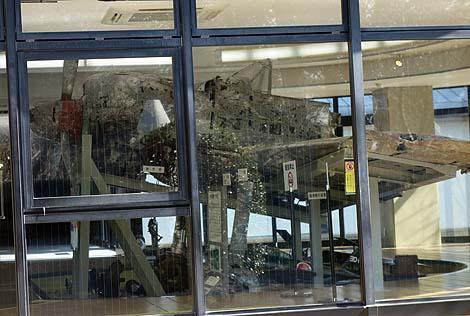 全国で唯一!陸軍の傑作機「疾風」の実機が展示されています「知覧特攻平和会館」(鹿児島南九州)