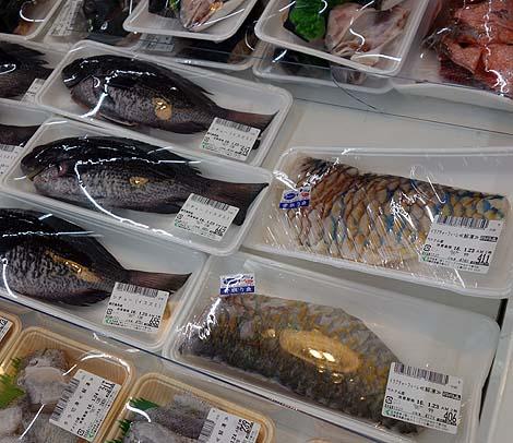かねひで タウンプラザ壺川店(沖縄那覇)熱帯魚の海鮮丼と琉球じーまーみ豆腐/ご当地スーパーめぐり