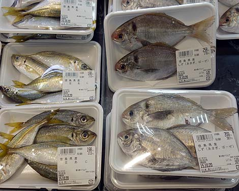 マルナカ 大寺店(徳島板野町)車中泊旅終了2日前・・・/ご当地スーパーめぐり