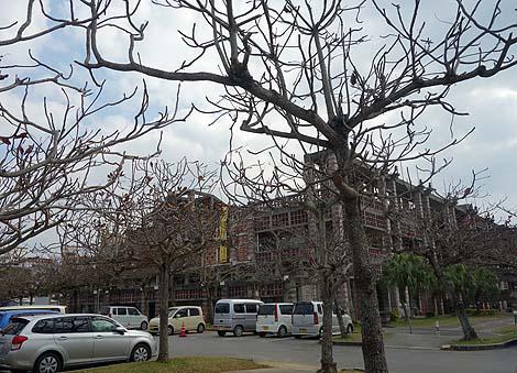 まるで東南アジアの遺跡のような独特の建築です「名護市庁舎」(沖縄名護)珍建築