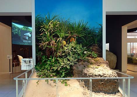 沖縄の自然・歴史・文化すべてがここに集約!「沖縄県立博物館」(沖縄那覇)