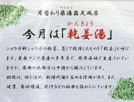 石灰岩質カルスト台地のミネラル豊富なお湯 休暇村「帝釈峡」(広島東城町)