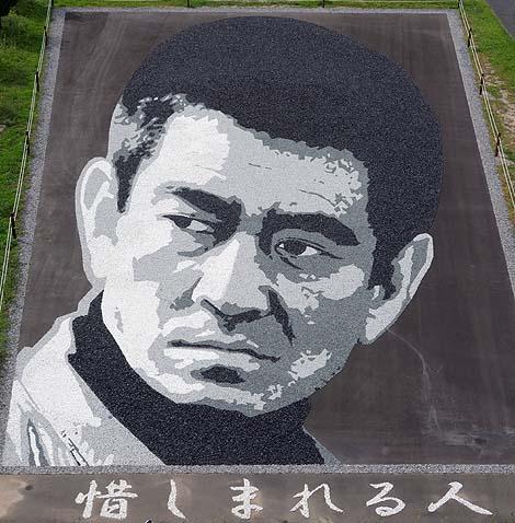 田んぼをおっきなキャンバスに見立て絵を描く発祥の地「たんぼアート」(青森南津軽郡田舎館村)