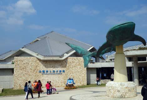 日本では一番充実している水族館ではと思います「美ら海水族館」(沖縄国頭郡本部町)