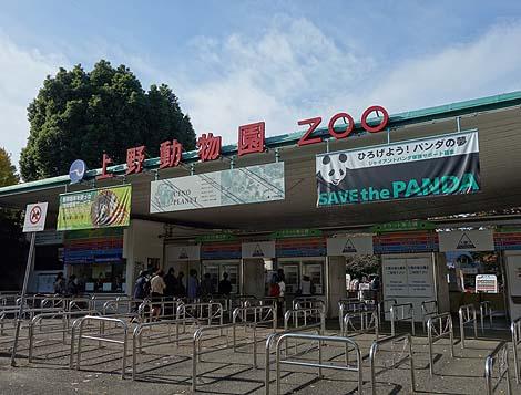今回は珍もB級もなんも関係ございませぬ・・・誰でも知ってる「上野動物園」(東京)