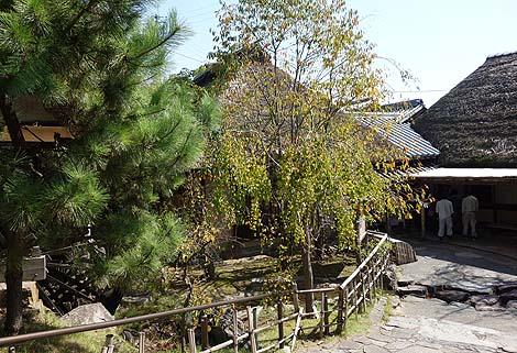 わら家(香川高松)わら葺き屋根の風情ある古民家で名物の釜揚げうどんをいただく