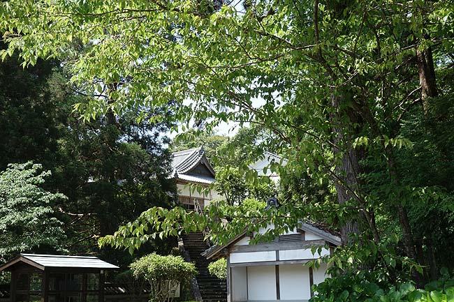 九州の城下町の中ではその町歩きが大人気ですね♪そのシンボル「飫肥城」(宮崎日南)
