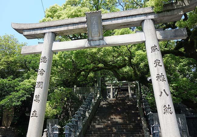 ちっさいハプニングもあったがこれでうどんはしごも10軒め♪だが高松へUターン・・・(日本一周357日目前編)