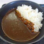 吉野家の新商品「黒カレー」ってどんな味?そして日南海岸に位置する不思議なモアイ像(日本一周352日目前編)