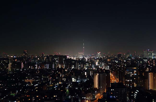 夜景めぐりと東京呑みのアテに是非とも食べたいんは旨い炭火焼やきとんやわ