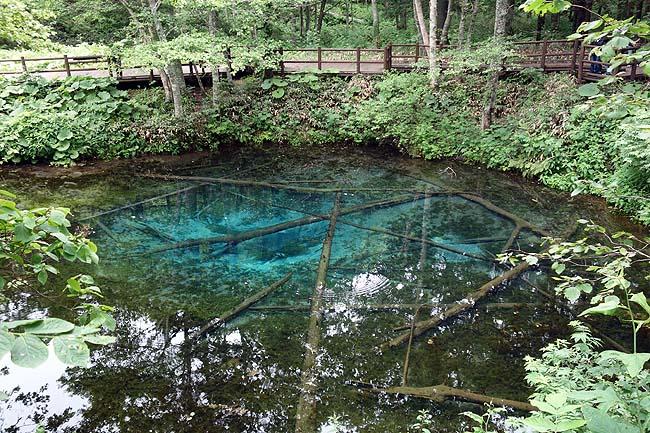 神の子池(北海道)摩周湖山奥に存在するエメラルドブル―に輝く神秘の池は一見の価値あり!