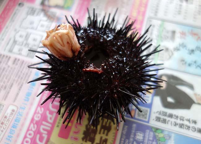 約40個のムラサキウニ殻剥き・・・ウニが高級品なのもこれが理由かもしれませんね