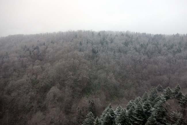 コミュ障おっさんソウル1人旅もこれにて完結!また雪で閉じ込められた旭川に戻って来ました