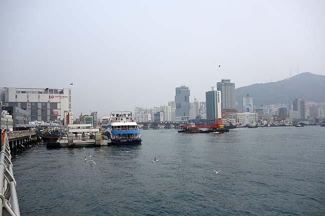 ナクチポックン(たこの甘辛炒め)釜山グルメをいただき海鮮いっぱいのチャガルチ市場へ
