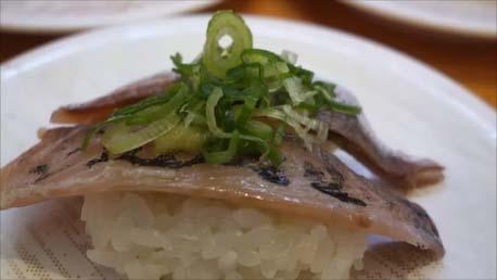 【怒涛の14日間16食バイキングその16】回転寿司「かっぱ寿司」の食べ放題60分1本勝負!果たして何皿食えるのか?