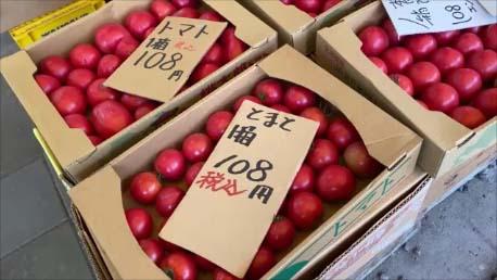 【全国ナンバー1の野菜価格破壊スーパー】全国500以上のスーパーめぐりしてきた私がびっくりした価格設定でした~「永山サービススーパー」「伊藤ストアー」(北海道北見)