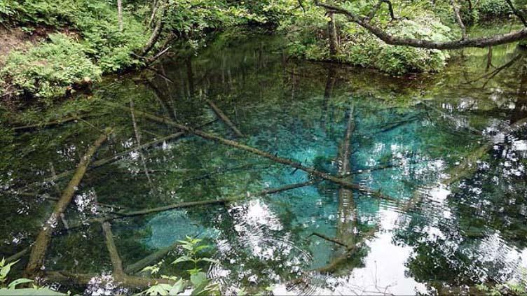【北海道川湯温泉おっさん1人旅】私的北海道温泉評価ナンバー1の極上成分豊富な硫黄泉でまったり1泊2食付宿泊 KKRかわゆ川湯保養所