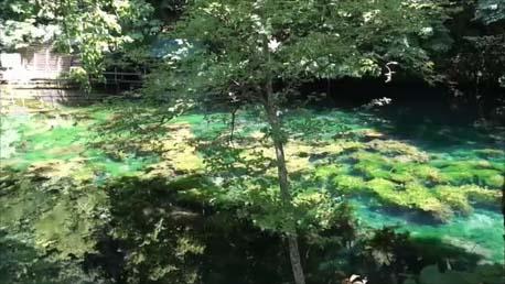 【北海道美瑛・富良野ぶらり旅4】晴れた!富良野の穴場絶景観光スポット「鳥沼公園」そして美瑛白金「青い池」回想+ニングルテラス
