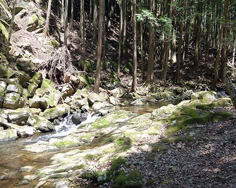滝、滝、滝のオンパレード!渓流散策「赤目四十八滝」(三重名張)
