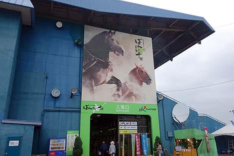 世界的に見ても唯一の競馬形態です「ばんえい競馬」(北海道帯広競馬場)