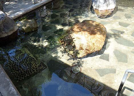 今回も北海道ローカル月間誌「HO(ほ)」を使っての無料入浴です♪「俄虫温泉旅館」(北海道厚沢部)
