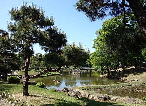 彦根城とセットで入園できる大庭園「玄宮園」(滋賀彦根)