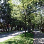 観光スポットにもなっている日本一のキャンパスの広さを持つ大学「北海道大学札幌キャンパス」(北海道札幌)