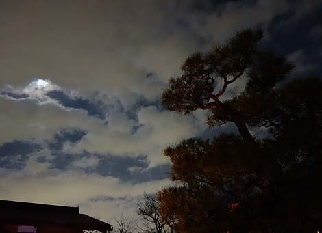 常寂光寺(嵐山花灯路・夜間特別拝観)京都・夜のライトアップ