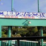桜島フェリー(桜島港~鹿児島港を24時間営業)
