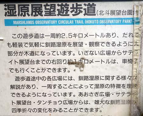 ここは日本ではないような・・・北海道の大地の奥深さを感じる「釧路湿原」(北海道釧路)