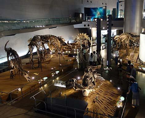 恐竜に特化した博物館ではその規模は全国ナンバー1「福井県立恐竜博物館」(福井勝山)
