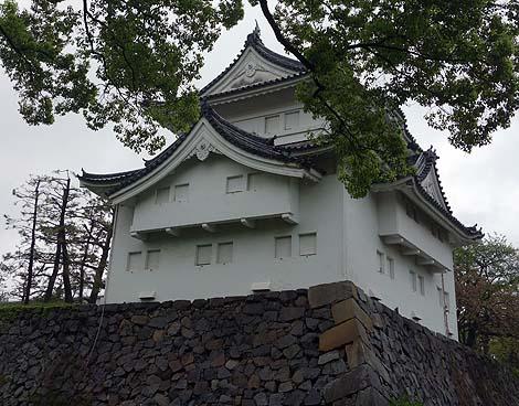 有名すぎるか・・・日本3名城の1つ「名古屋城」(愛知県)