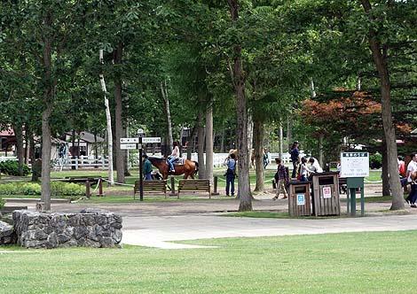 競馬好きには必須のサラブレットテーマパーク「ノーザンホースパーク」(北海道苫小牧)