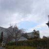 大阪最大級の屋内植物園「咲くやこの花館」(大阪市花博記念公園鶴見緑地)