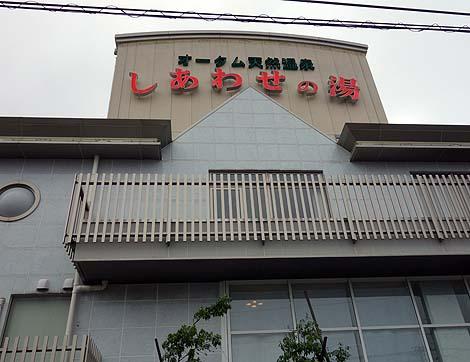 薄緑色をした都会にある源泉かけ流し!「オータム天然温泉しあわせの湯」(石川金沢)