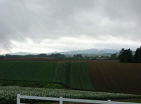 牧草ロールで作ったロールちゃんと記念撮影♪「新栄の丘」(北海道美瑛)