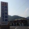 1月・2月には咲き誇る2種類の水仙 立川水仙郷(兵庫淡路島)