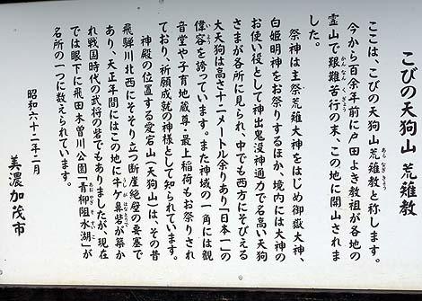 高さ12m日本一の天狗像がいる宗教施設「古井[こび]の天狗山」(岐阜美濃加茂)