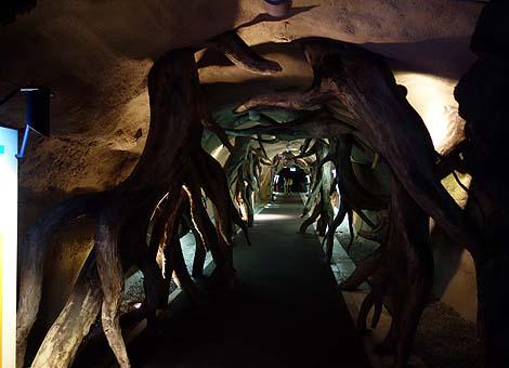 戦時は地下壕だった光のファンタジー!地球の歴史が歩いてるだけで分かる「地球回廊」(岐阜瑞浪)