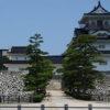 10万石級の大名の城の敷地としては非常に大規模「富山市郷土博物館[富山城]」(富山)模擬城
