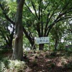 こんなところに・・・合格祈願に上野大仏(東京上野公園)B級珍スポット