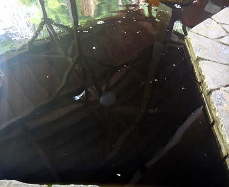 真っ黒なコーラ色をした炭酸イオンふんだんの泉質「ユンニの湯」(北海道由仁町)